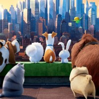 Secret Life of Pets: Off the Leash Set to Open on 27th March at Universal Studios Hollywood