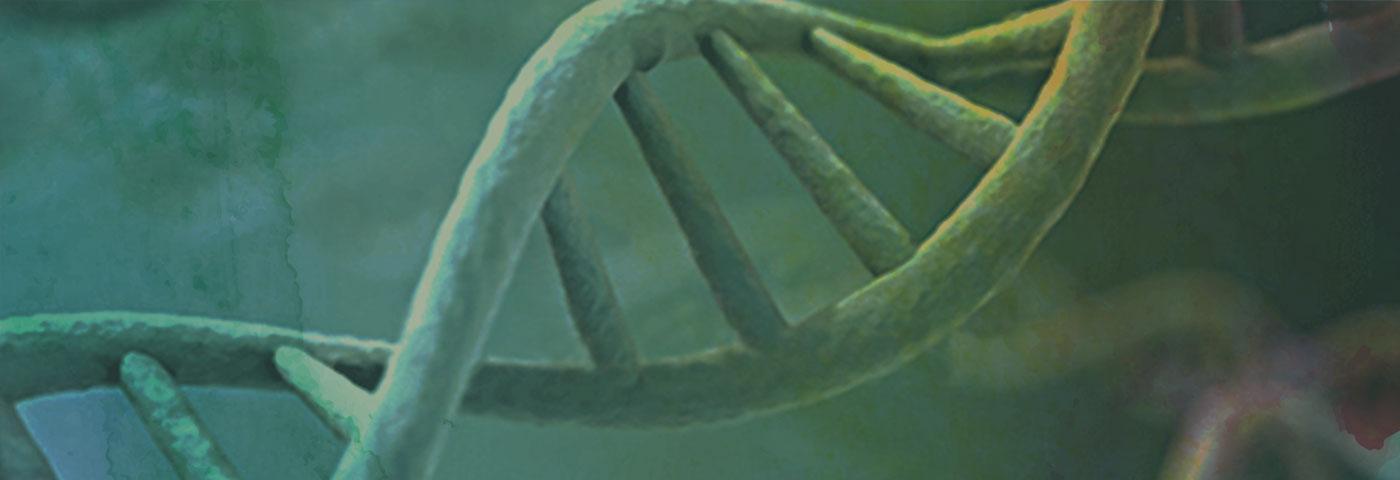 Genomics DNS Strand