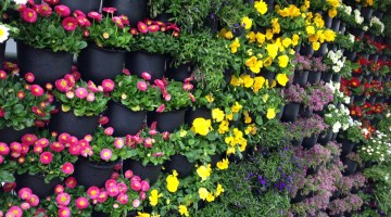 Jardines Verticales para tu hogar