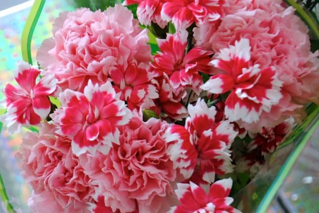 Clavel ramo de flores