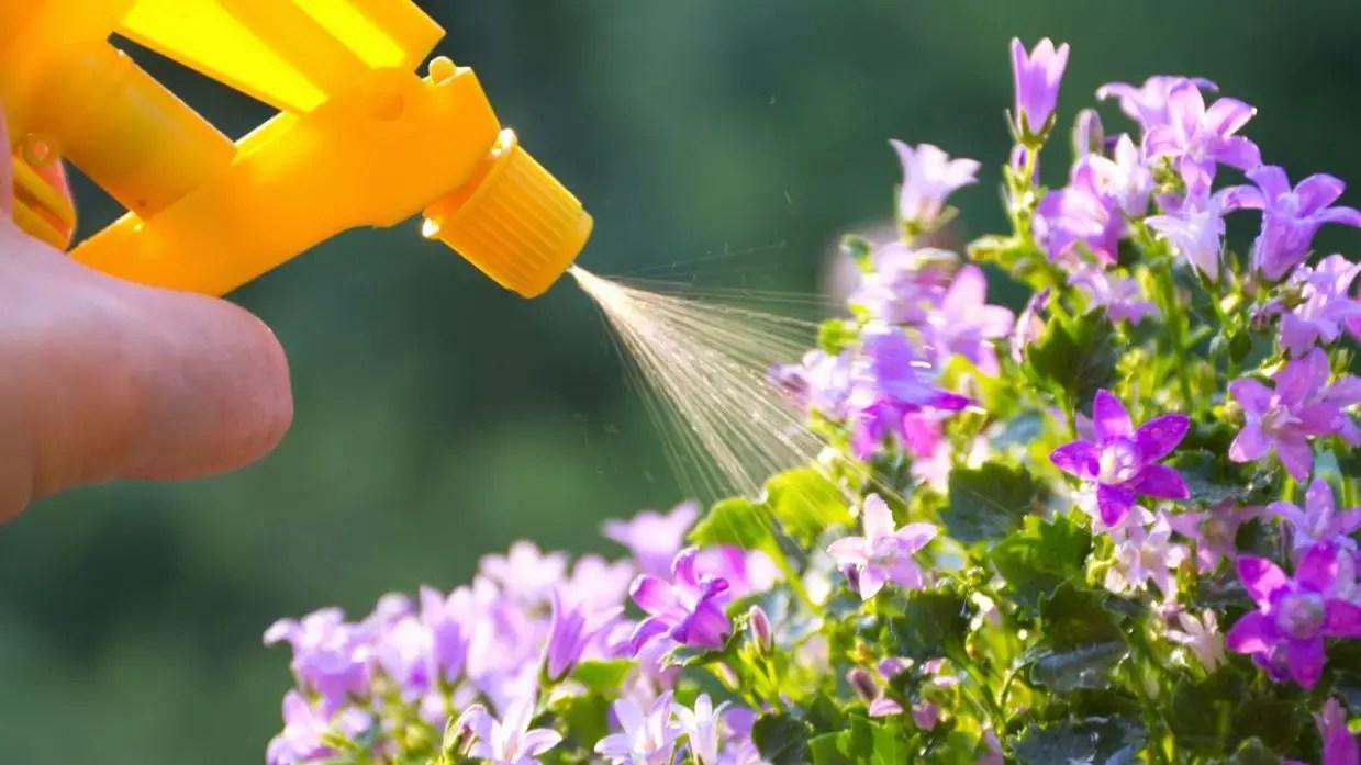 abonos-fertilizantes
