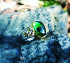 silvio - 1106 - ring 1