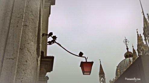 Pigeons outside the basilica