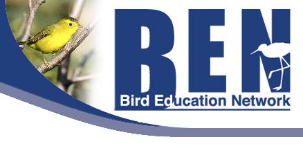 Birds Education Network