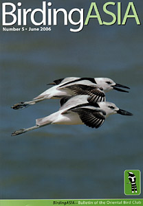 birdingasia bird