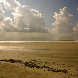 Mudflat_and_clouds_in_Sundarbans