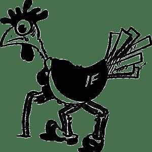 bird-40083_640