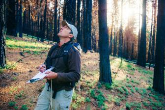 Using this auditory repertoire of several hundred calls, Ryan Burnett monitors birds in five-minute point counts to assess the long-term health of habitat. The Black-backed Woodpecker's call is a sharp, distinct check. Photo: Ken Etzel