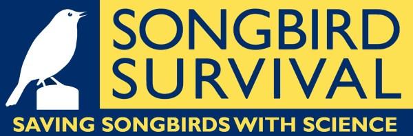 songbird-survival