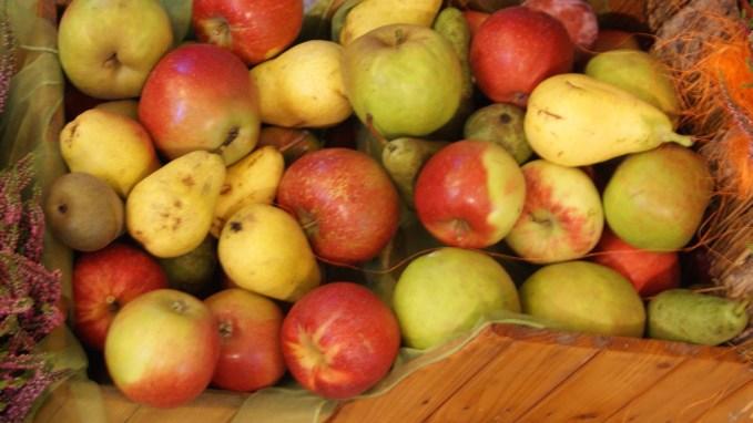 jabłka dożynki Cielmice #produktywność