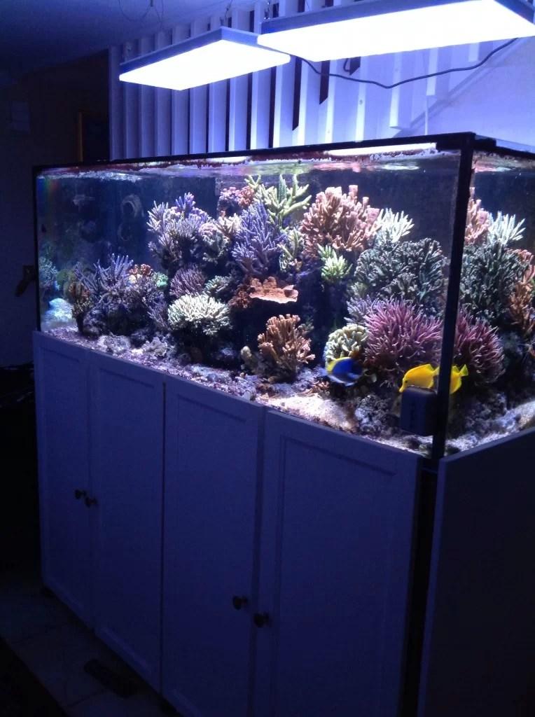 Atlantik V2b Dual Diode Pendants Aquarium Led Lighting