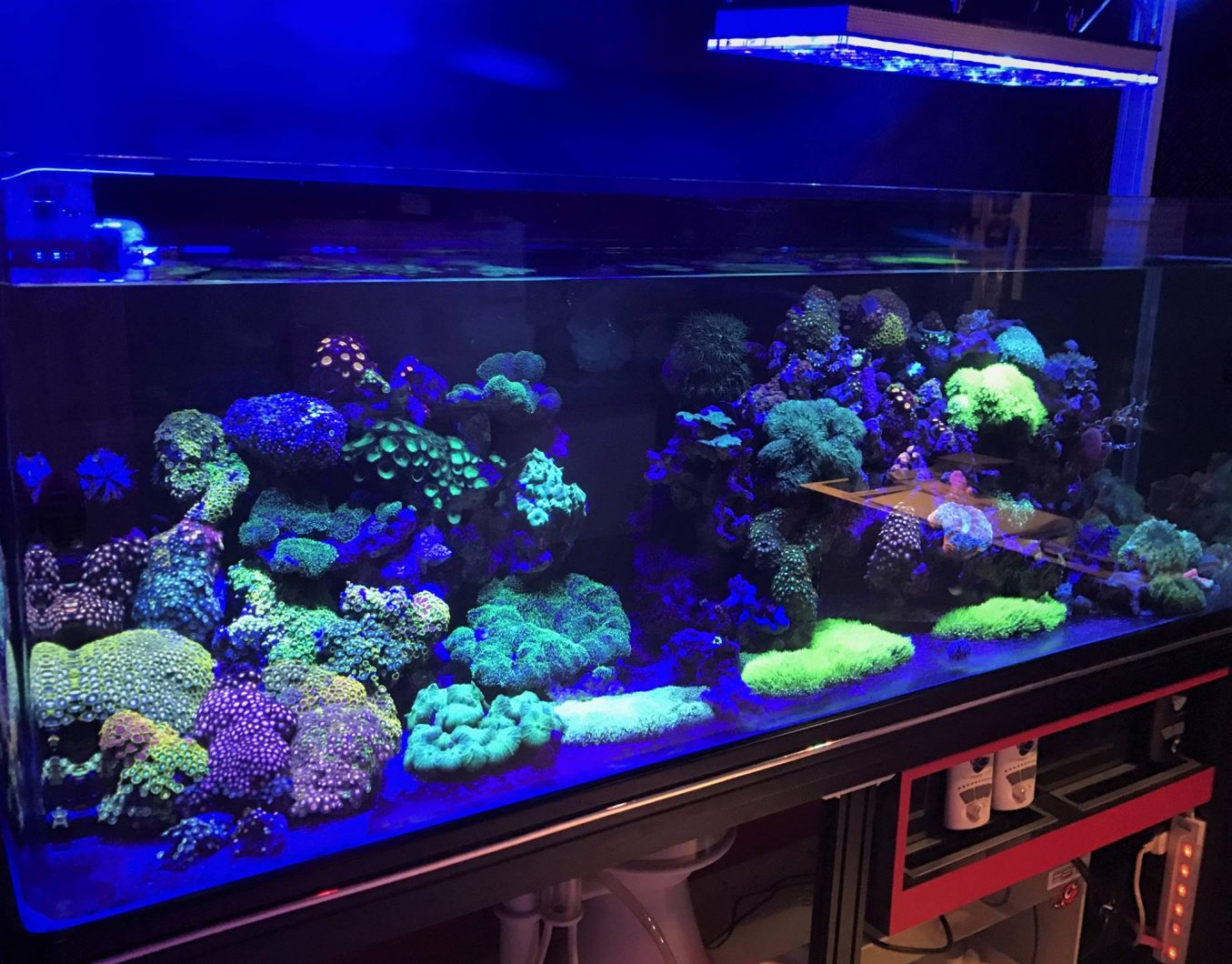 Reef Aquarium Led Lighting