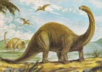 3brontosaurus