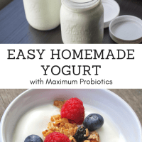 Easy Homemade Yogurt Recipe with Maximum Probiotics for Skin and Gut Health
