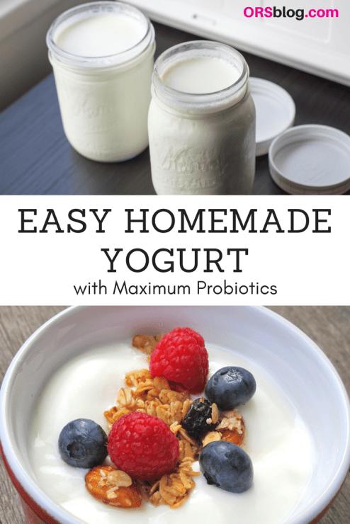 Easy Homemade Yogurt Recipe with Maximum Probiotics for Skin and Gut Health