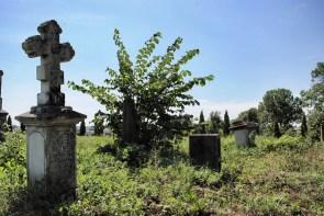 Tablica nagrobna na cmentarzu prawosławnym w Terebiniu