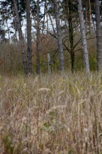 Krzyż pamiątkowy we wsi Szpaki koło Nosowa