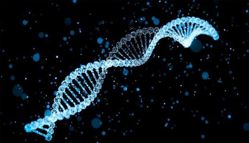 Γαλλία: Έφηβος βιοχάκερ ενέγραψε στο DNA του το Κοράνι και τη Βίβλο.....