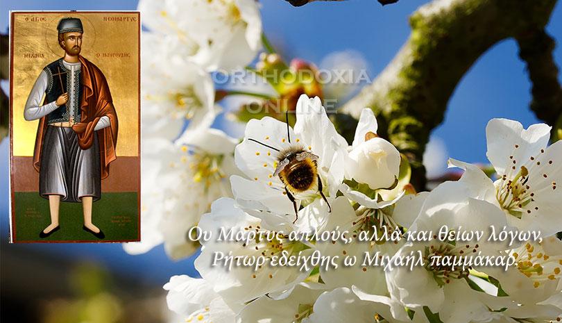 Άγιος Μιχαήλ ο Μαυρουδής, τον έκαψαν ζωντανό οι Οθωμανοί στο προαύλιο του Ιερού Ναού της Υπαπαντής του Σωτήρος