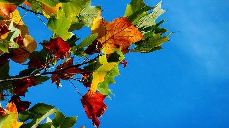 Καιρός | Η πρόγνωση του καιρού από την ΕΜΥ για την Τρίτη 22 Οκτωβρίου
