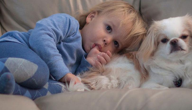 Κατοικίδια και μωρά: μύθοι και αλήθειες
