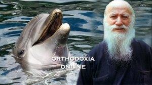 Δέκα δελφίνια φιλούσαν το χέρι του Αγίου Πορφυρίου