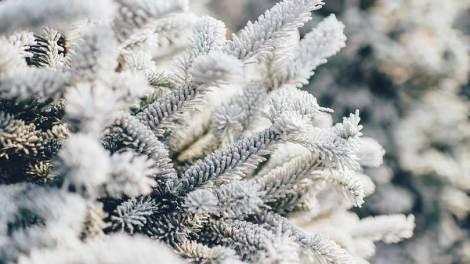 Καιρός | Η πρόγνωση του καιρού από την ΕΜΥ για την Τρίτη 24 Δεκεμβρίου