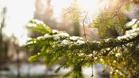 Καιρός | Η πρόγνωση του καιρού από την ΕΜΥ για την Παρασκευή 27 Δεκεμβρίου