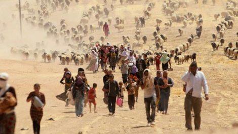Κόσμος | ΟΗΕ: SOS έρχεται τσουνάμι κλιματικών προσφύγων