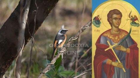 Εορτολόγιο 2020: Ο άγνωστος άγιος που γιορτάζει σήμερα, Άγιος Δημήτριος ο Πελοποννήσιος