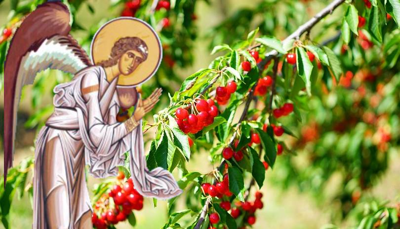 Ο Άγγελος και το όραμα με τα 5 φρούτα