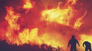 Πυρκαγία στην Πάτρα | Καμένα σπίτια και στάχτη άφησε πίσω της η φωτιά