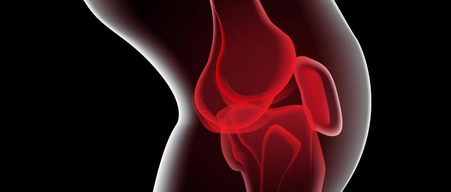 Knee-Pain-1024×600-c-default REV