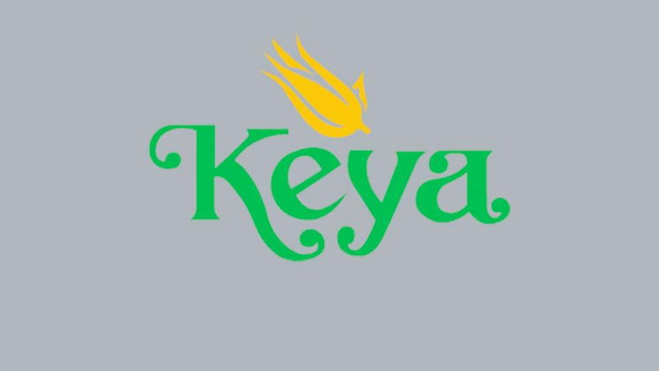 কেয়া কসমেটিকস্ লি: এর ২২তম বার্ষিক সাধারণ সভা অনুষ্ঠিত