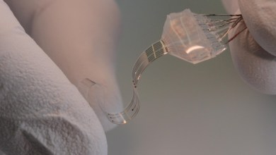 Photo of Spinal implant could one day let paralyzed people walk again