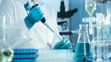 Photo of Regenerative Medicine Has a Bright Future