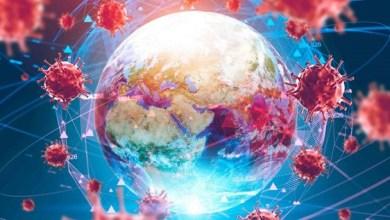 Photo of Coronavirus pandemic: Updates from around the world