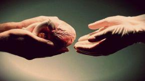 Православный взгляд на трансплантацию органов