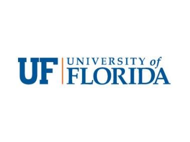 university-florida