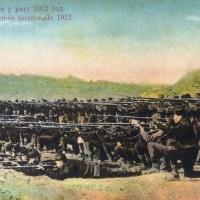 Puška 10,66 mm Berdan №2 M-1870