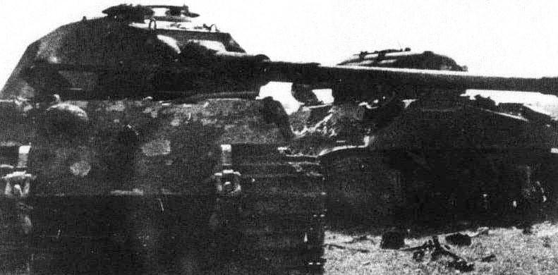 Tigar posle tarana od strane Šermana