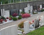 Cimitero della Capretta. Almeno un collegamento auto alla settimana