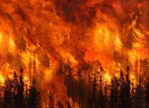 Ordinanza sindaci dell'Area Sud-Ovest Orvietano per prevenzione di incendi