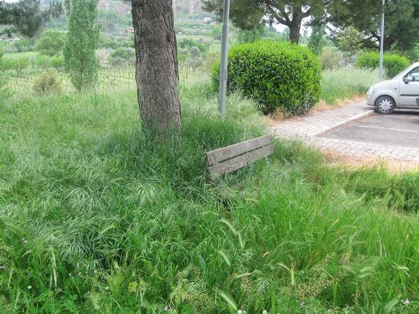 Sferracavallo, l'erba avanza. A Orvieto il cemento rattoppa