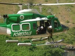Discariche abusive, azioni di controllo di Carabinieri e Forestale per tutela dell'ambiente