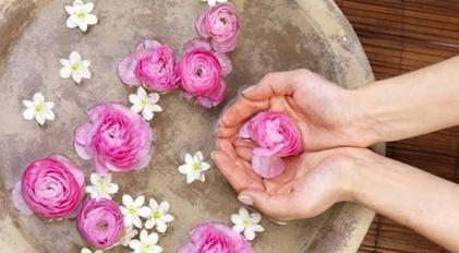"""""""Una pianta per ogni malanno: i benefici delle nostre erbe spontanee mangerecce ed aromatiche"""" al Museo del Fiore"""
