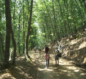 Festa contadina e artigiana al Monte Rufeno