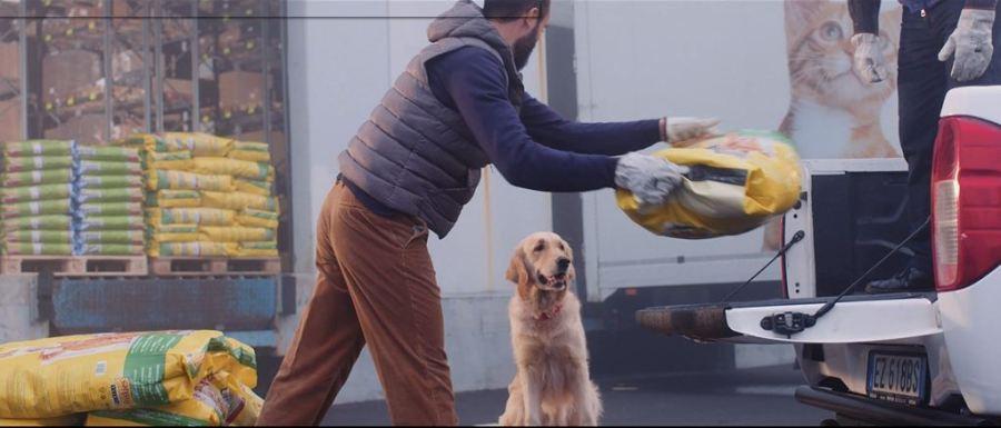 Donazioni pasti amici animali, 5 i centri umbri aiutati da Frieskes tra cui Orvieto