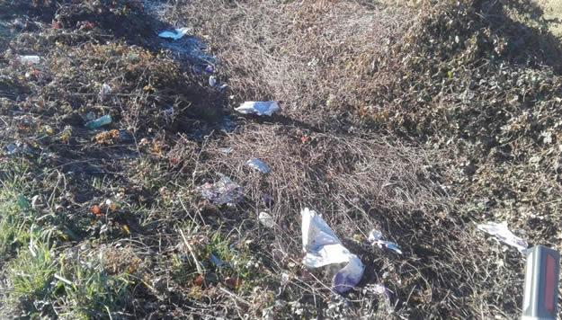 Il taglio dell'erba mostra la verità: la strada dell'Abbadia invasa dai cumuli di plastica