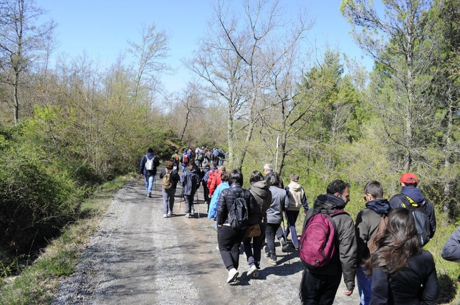 Acquapendente, nel fine settimana quasi 700 camminatori hanno esplorato i percorsi naturali del territorio